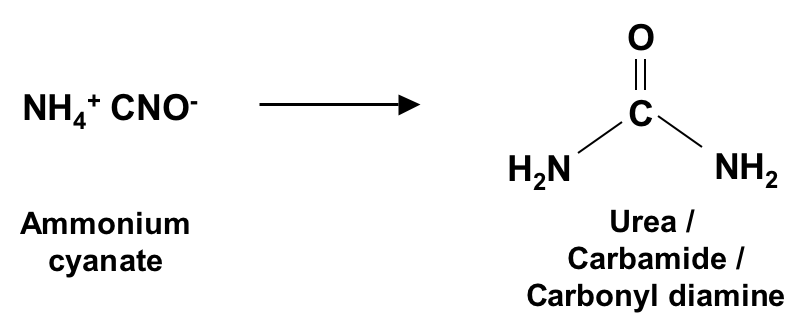 project of synthesising urea from ammonium cyanate The reaction mechanics of wöhler's synthesis, namely how the salt ammonium cyanate transforms into urea, are still not fully understood despite efforts being made by numerous researchers over the last century this search described thirty years ago as 'a saga in reaction mechanisms'10 continues to be.