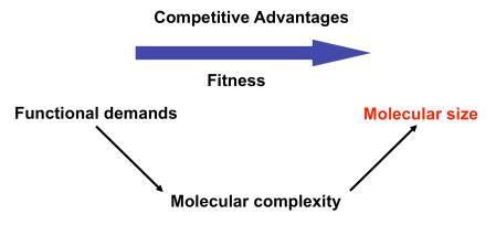 Fig.1-CompetAdvant